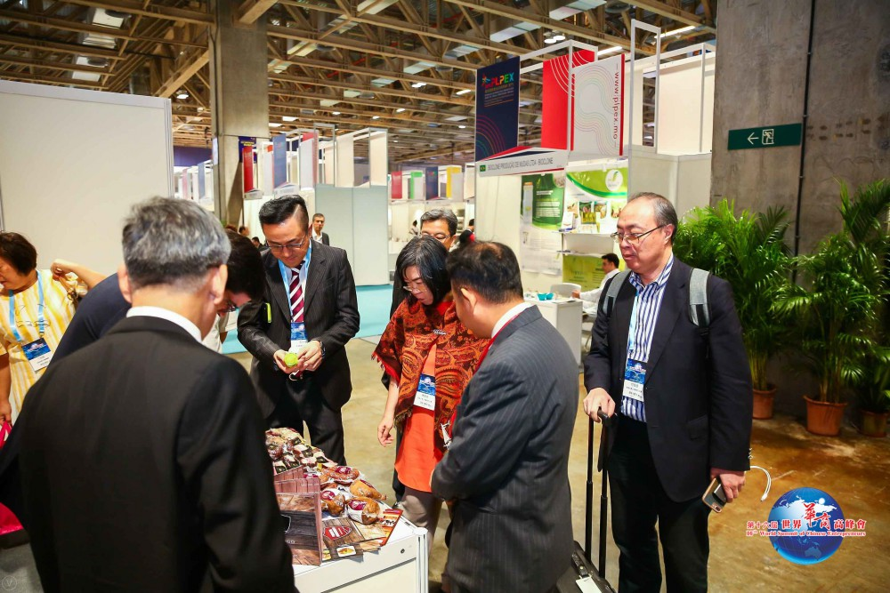 第十六屆世界華商高峰會參觀PLPEX一景。